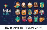 cute indian hand drawn owl... | Shutterstock .eps vector #436962499