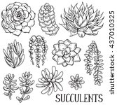 vector collection of hand drawn ... | Shutterstock .eps vector #437010325