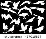 illustration with gull... | Shutterstock .eps vector #437015839