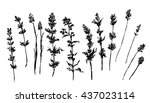 drawing large set  collection... | Shutterstock .eps vector #437023114
