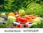eating healthy food   organic