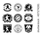 judo vector icons 21 | Shutterstock .eps vector #437174281