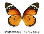 beautiful monarch butterfly... | Shutterstock . vector #437175319