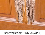 the wood door with termites... | Shutterstock . vector #437206351