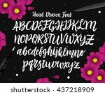 vector hand drawn font. white...