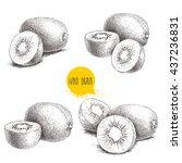 Hand Drawn Kiwi Fruit Vector...