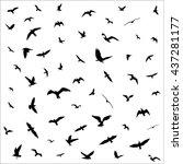 flying birds silhouettes on... | Shutterstock . vector #437281177