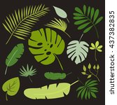 set of tropical leaves  floral...   Shutterstock .eps vector #437382835