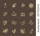outline icon set   spices ... | Shutterstock .eps vector #437422411