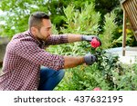 Stock photo handsome young man gardener landscaping and taking care of beautiful roses 437632195