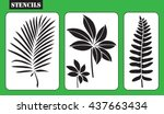 stencils. set of tropical... | Shutterstock .eps vector #437663434