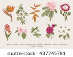 Exotic Flowers Set. Botanical...