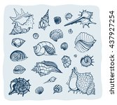 set with various sea shells.... | Shutterstock .eps vector #437927254