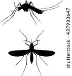 mosquito silhouettes   set  ... | Shutterstock .eps vector #437933647