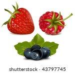photorealistic vector... | Shutterstock .eps vector #43797745