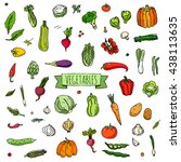 hand drawn doodle vegetables... | Shutterstock .eps vector #438113635