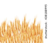 wheat ears with space for text. ... | Shutterstock .eps vector #438188995