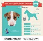 vector infographic of bull...   Shutterstock .eps vector #438261994