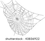 illustration with spider web... | Shutterstock . vector #43836922
