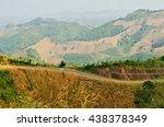 road in forest | Shutterstock . vector #438378349