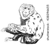 chimpanzee drawing vector.... | Shutterstock .eps vector #438396655