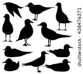 seagull silhouette isolated | Shutterstock .eps vector #438476371