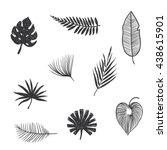 sat tropical leaves. hand draw | Shutterstock .eps vector #438615901
