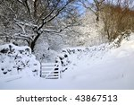 Wooden Gate Leading Into The...