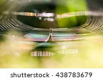 abstract composition with... | Shutterstock . vector #438783679