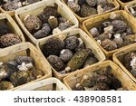 boxes of morel mushrooms at a... | Shutterstock . vector #438908581