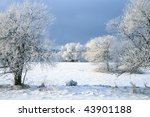 Winter tree, landscape near small, picturesque Pasterka village in Poland. Famous tourist attraction, Table Mountain. - stock photo
