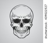 skull | Shutterstock .eps vector #439022527