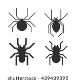 Vector Poisonous Spiders....