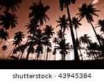 palm trees sunset | Shutterstock . vector #43945384