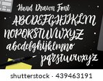 Calligraphic Vector Script Fon...