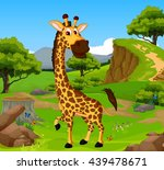 funny giraffe cartoon in the... | Shutterstock .eps vector #439478671