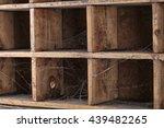 macro texture of old wooden box ... | Shutterstock . vector #439482265