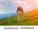 farmer mower for hand hay on... | Shutterstock . vector #439596349