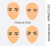 Set Of Woman Eyes Types Vector...