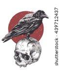 Raven On Skull Grunge Image....