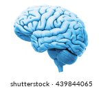 3d rendered  medically accurate ... | Shutterstock . vector #439844065