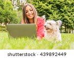 dog is watching it's owner...   Shutterstock . vector #439892449