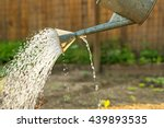 Watering Can On The Garden...