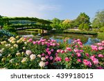 Stock photo rose garden 439918015