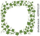 frame with vine leaves on white ... | Shutterstock .eps vector #439991119