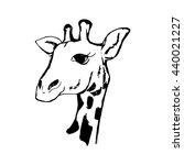 a graphical image of a giraffe... | Shutterstock .eps vector #440021227