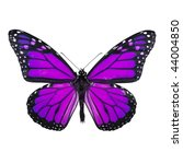 Stock photo purple butterfly isolated on white background 44004850