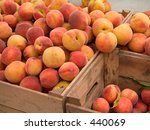 This is a shot of some crates of fresh peaches. - stock photo