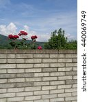 Brick wall, red roses and green trees behind - stock photo