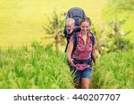 nature walk in green rice... | Shutterstock . vector #440207707